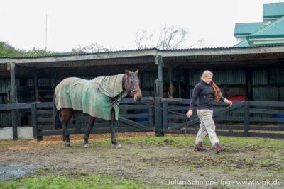 Kathi mit Pferd am Halfter