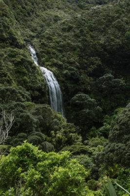 Wasserfall bahnt sich den Weg durch das grüne