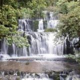 Neuseeland - Reisebericht Teil 8 - Wasserfälle und die Catlins (Regenwald) bis Papatowai - Reisebericht
