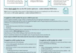 Das IR742 Formular für die Beantragung der IRD