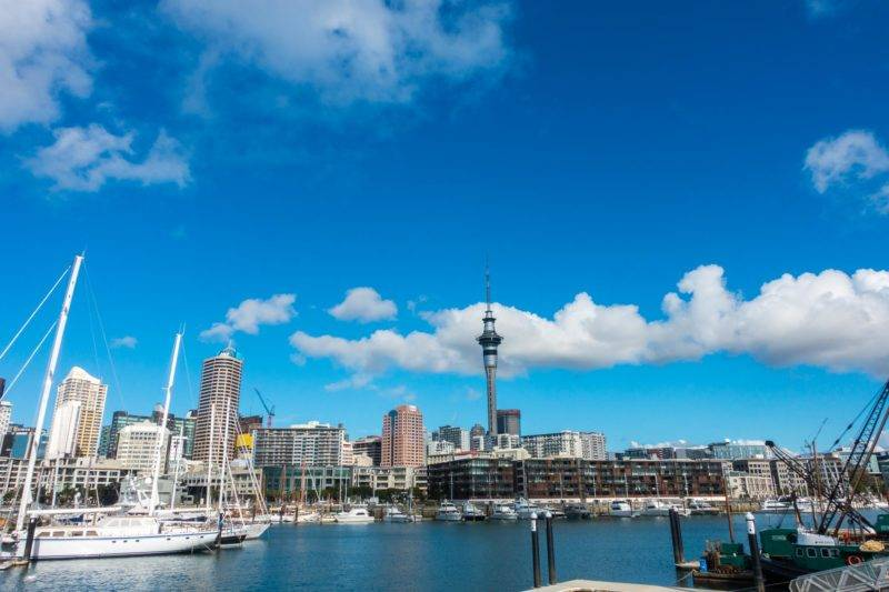 Blick auf den Hafen in Auckland