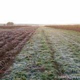 Die ersten frostigen Tage in Appleby - Reisebericht