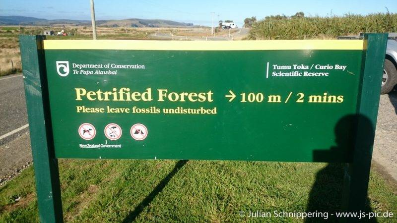 DOC Hinweisschild zum Petrified Forest in Neuseeland