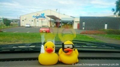 Zwei Quietscheentchen vor dem Splash Center in Whanganui