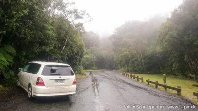 Auto auf dem Parkplatz im Dschungel