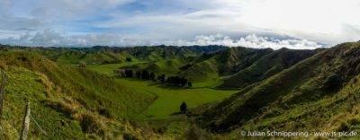 Hügel und grüne Wiesen