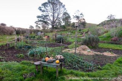 Garten mit Gemüse
