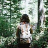 Etappenvorschläge für den Heaphy Track Greatwalk - Backpacker Tipps
