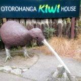 Kiwi geprägte Tage - Reisebericht