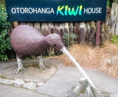 Kiwi Statue aus Beton