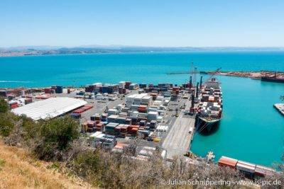 Frachtschiff und viele Container im Hafen von Napier