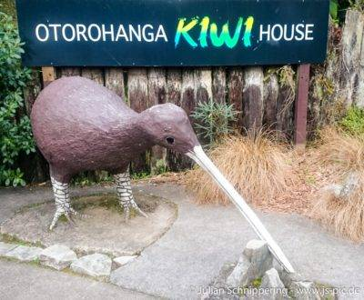 Kiwistatue vor dem Otorohanga Kiwi House