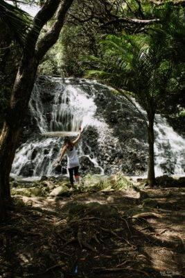 Wasserfall und Bäume