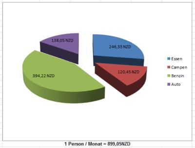 Kreis Diagramm zu den Reisekosten in Neuseeland