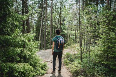Wanderer steht im grünen Wald