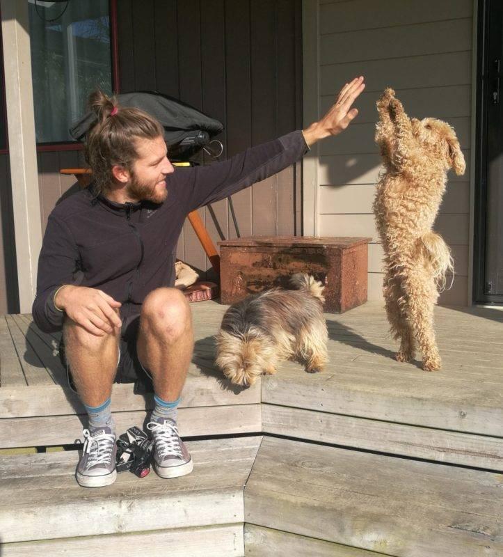 Highfive zum Housesitting und den Erfahrungen mit Tieren