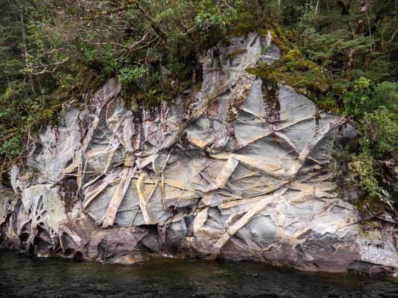 Versteinerungen am Lake Manapouri