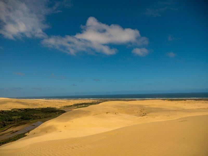 Te Paki Sanddünen mit Blick aufs Meer