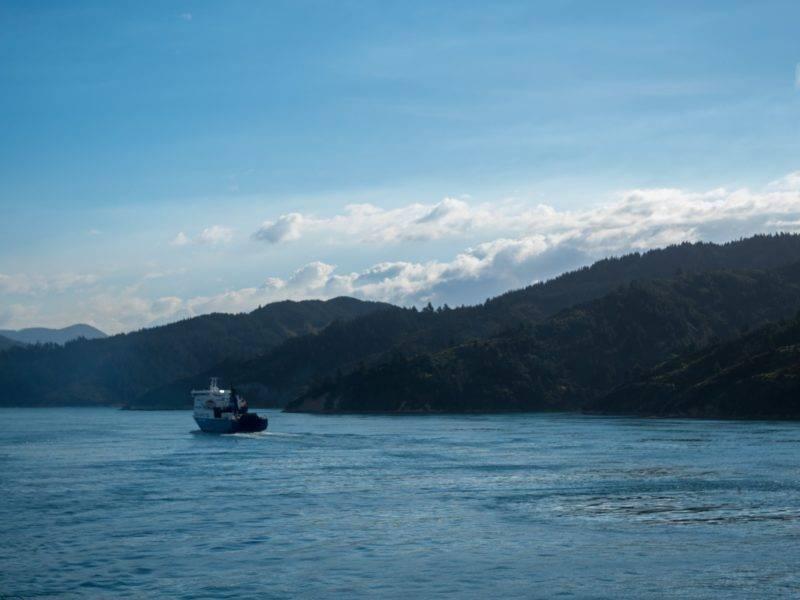 Die Fähre auf dem Weg nach Picton