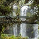 Die vierte Reise nach Neuseeland #11 – Reisebericht