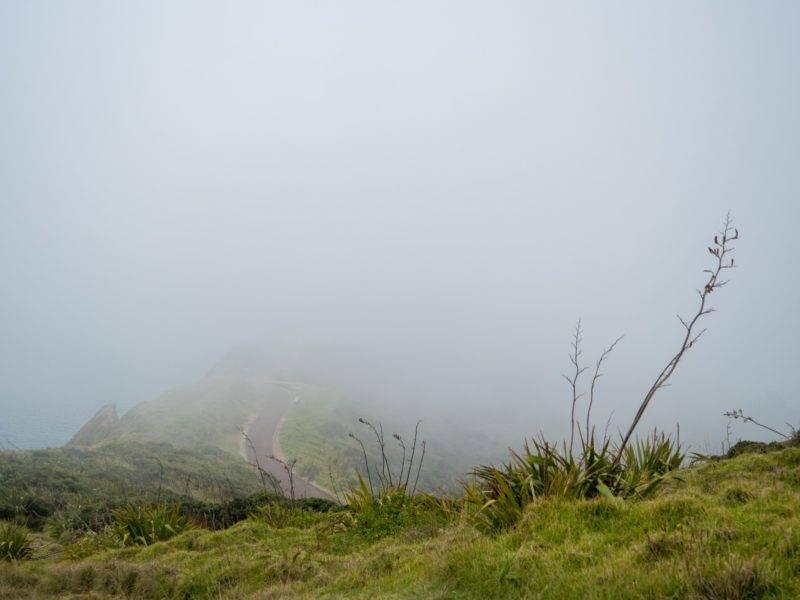 Cape Reinga im Nebel