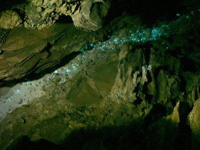 Glühwürmchen in der Abbey Cave