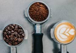 Ansicht von rohen, gemahlenen und zubereiteten Kaffee Bohnen in Neuseeland