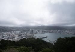 Aussicht vom Mount Victoria auf Wellington