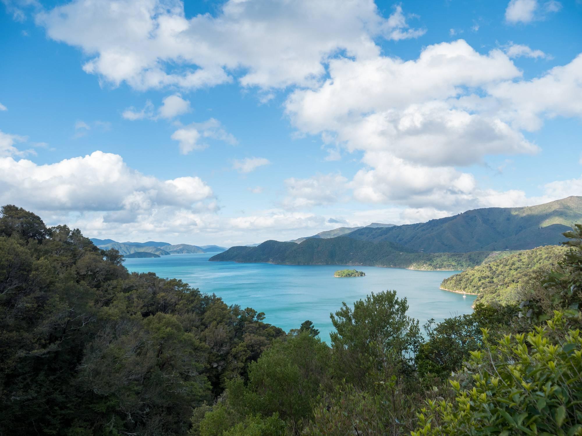 Der Blick auf die Marlborough Sounds um Picton