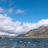 Neuseeland, Digitales Nomadentum und Co. - Moreblue Podcast