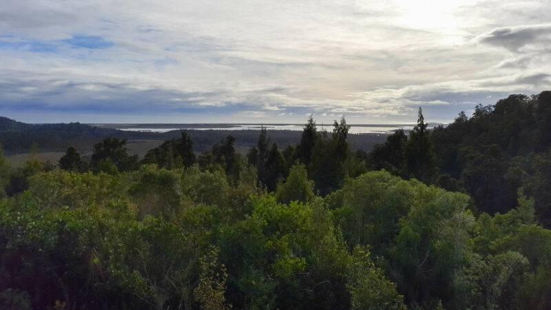 Blick auf die Küste, den Regenwald und die Okarito Lagoon