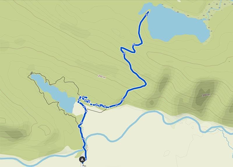 Lake Gault Track Wanderkarte